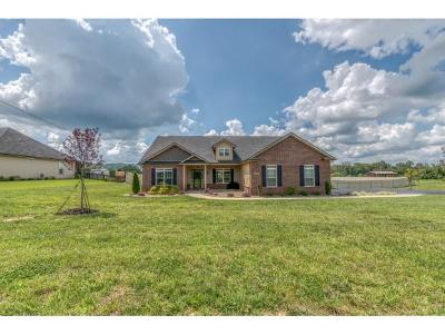 Washington-Tn County Single Family Home For Sale: 1537 Old Stagecoach Road