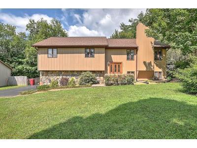 Johnson City Single Family Home For Sale: 4107 Bradford Ln