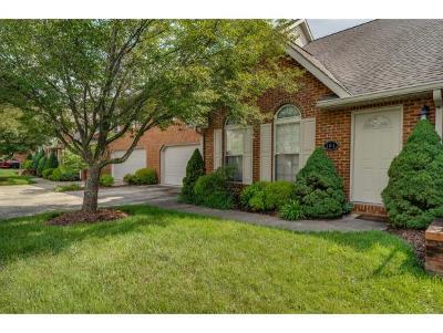 Johnson City Condo/Townhouse For Sale: 404 E Mountain View Rd #104