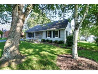 Elizabethton Single Family Home For Sale: 807 East A