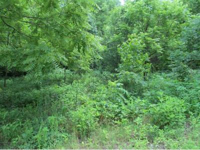 Greene County Residential Lots & Land For Sale: 512 Lawing Road