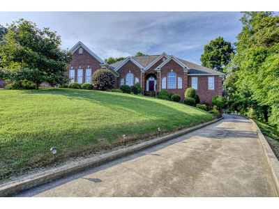 Kingsport Single Family Home For Sale: 600 Red Oak Plantation Drive