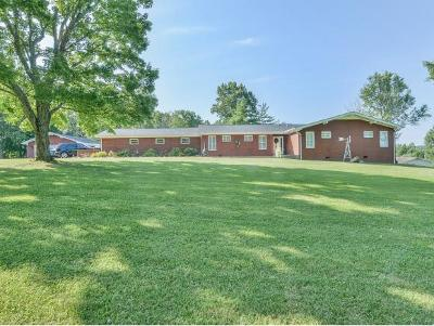Greeneville Single Family Home For Sale: 86 Kimbili Dr.