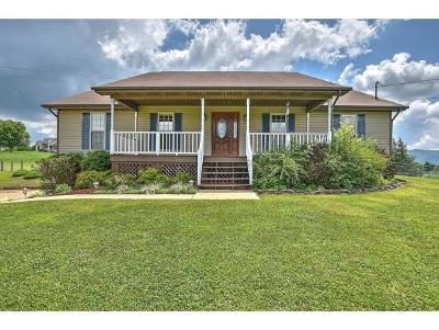 Jonesborough Single Family Home For Sale: 127 Sarah's Way