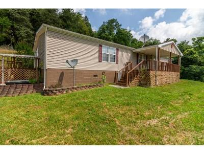 Bristol VA Single Family Home For Sale: $95,000