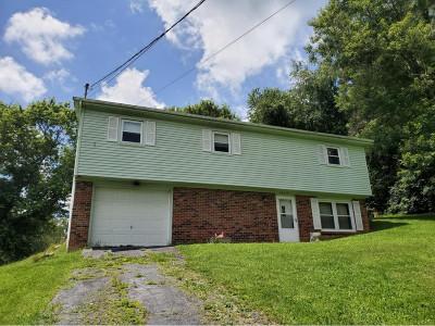 Bristol Single Family Home For Sale: 24424 Briscoe Drive