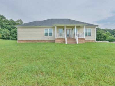 Greeneville Single Family Home For Sale: 6565 W. Allens Bridge Rd