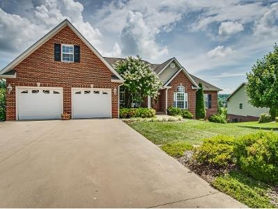 Jonesborough Single Family Home For Sale: 175 Farmstead Lane
