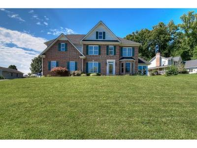 Elizabethton Single Family Home For Sale: 103 Hidden Valley Road