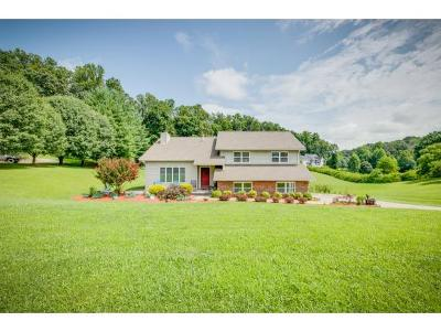 Church Hill Single Family Home For Sale: 508 Springfield Ct