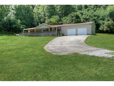 Hawkins County Single Family Home For Sale: 3595 Highway 11w
