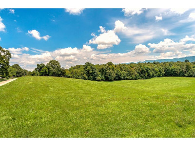 Washington-Tn County Residential Lots & Land For Sale: TBD Couch Rd