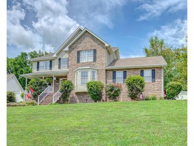 Johnson City Single Family Home For Sale: 700 Glen Oaks Place