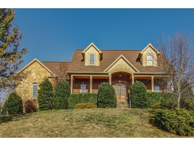 Johnson City Single Family Home For Sale: 1171 Cattail Point