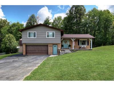 Unicoi Single Family Home For Sale: 119 Meadowstone Drive