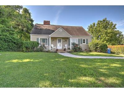 Jonesborough Single Family Home For Sale: 508 E Main Street