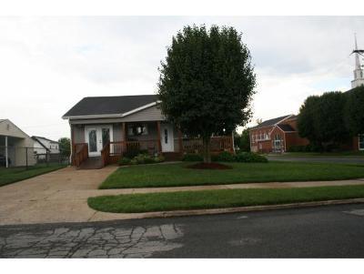 Kingsport Single Family Home For Sale: 244 Dunbar