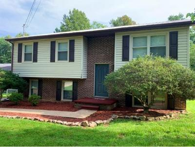 Greeneville Single Family Home For Sale: 1138 Old Shiloh Rd