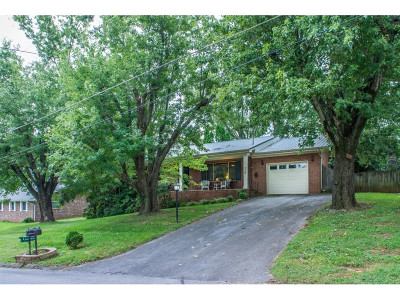 Greeneville Single Family Home For Sale: 209 Skyview Dr.