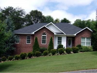 Single Family Home For Sale: 237 Carrie Circle