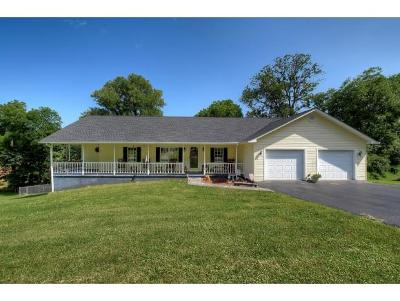 Elizabethton Single Family Home For Sale: 134 Whitson Drive