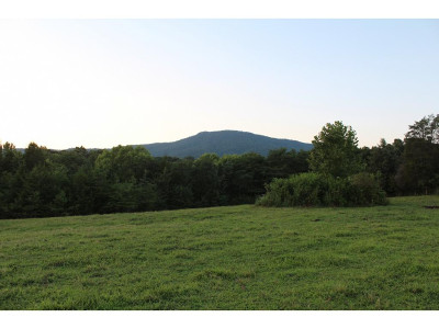 Greene County Residential Lots & Land For Sale: Horton Highway