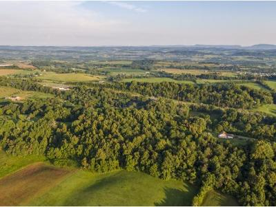 Washington-Tn County Residential Lots & Land For Sale: McCarty Hollow Rd