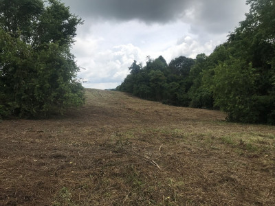 Washington-Tn County Residential Lots & Land For Sale: TBD N Highway 81