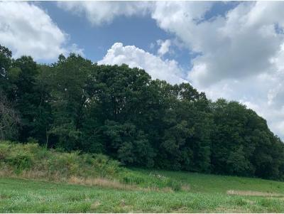 Piney Flats Residential Lots & Land For Sale: 3441 Allison Meadows Boulevard