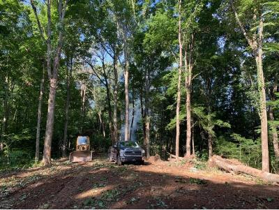 Washington-Tn County Residential Lots & Land For Sale: 285 Loafers Glory View