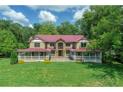 Bulls Gap Single Family Home For Sale: 240 Kidwell Lane
