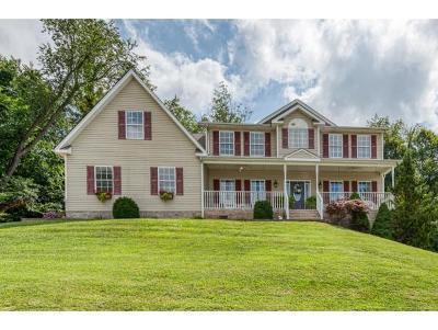 Bristol VA Single Family Home For Sale: $299,985