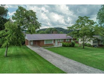 Rogersville Single Family Home For Sale: 1408 Allison Street