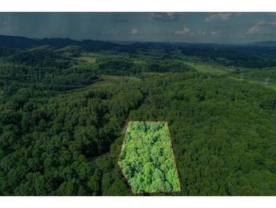 Hawkins County Residential Lots & Land For Sale: 209 Willow Creek Drive