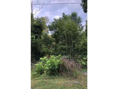Washington-Tn County Residential Lots & Land For Sale: TBD Big Bear Lane