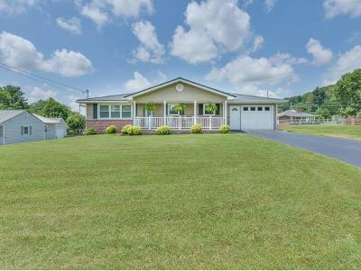Hawkins County Single Family Home For Sale: 114 Grandview Rd