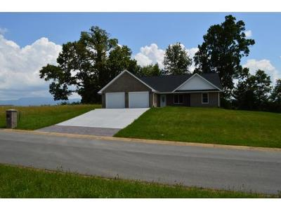 Greeneville Single Family Home For Sale: 412 Garden Meadow Drive