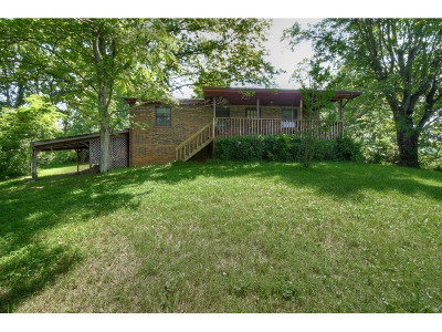 Fall Branch Single Family Home For Sale: 744 Church Rd