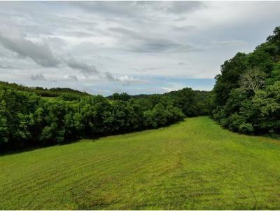 Greene County Residential Lots & Land For Sale: 2120 Oakwood Rd