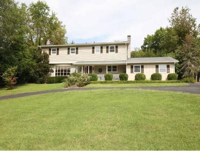 Bristol Single Family Home For Sale: 617 W. Valley Drive