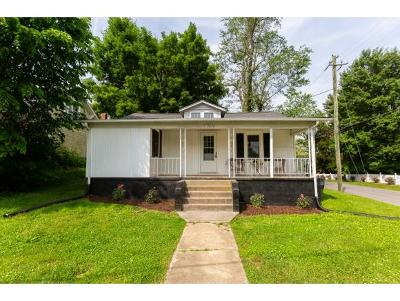 Bristol Single Family Home For Sale: 1500 Georgia Avenue