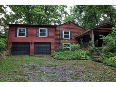 Greeneville Single Family Home For Sale: 530 Morgan Rd