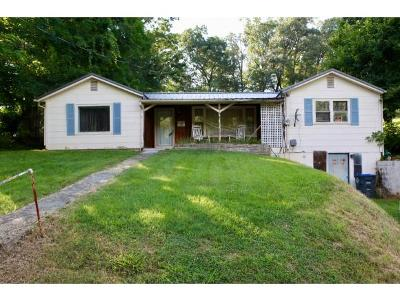 Kingsport Single Family Home For Sale: 1718 Rock Springs Rd