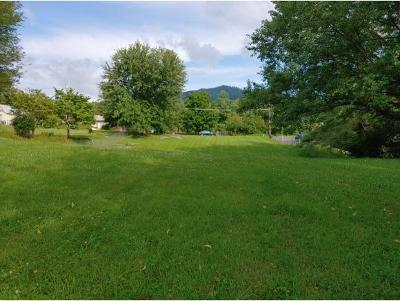 Washington-Tn County Residential Lots & Land For Sale: 1920 1/2 Triangle Rd