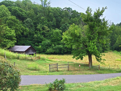 Cocke County Single Family Home For Sale: 2395 Howard Road