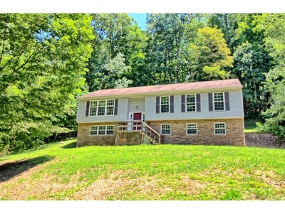 Kingsport Single Family Home For Sale: 713 Stuffle St