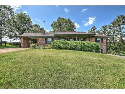 Single Family Home For Sale: 255 Tilson