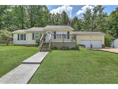 Greeneville Single Family Home For Sale: 1222 Robinhood Rd