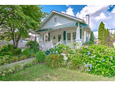 Elizabethton Single Family Home For Sale: 800 S Riverside Dr