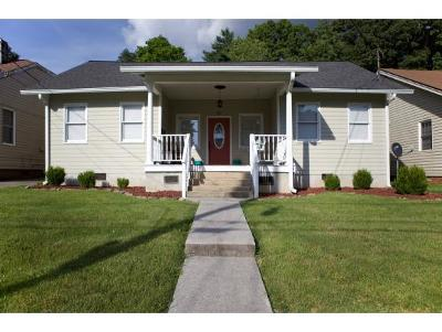 Bristol Single Family Home For Sale: 421 Carolina Ave